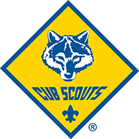 CubScout200